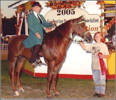 Lad's Red Rebecca Z. & Laura Atkinson taking Reserve honors in the English Pleasure Championship at the 2005 Show & Celebration